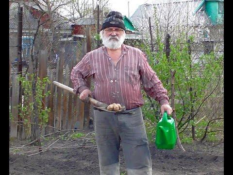 видео: Новый метод посадки картошки. Посадка картошки 2016