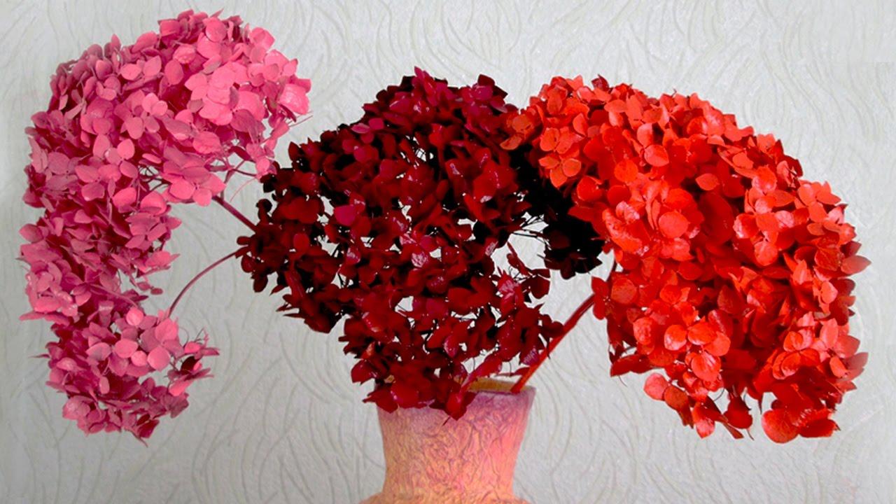 цвет сухая роза фото