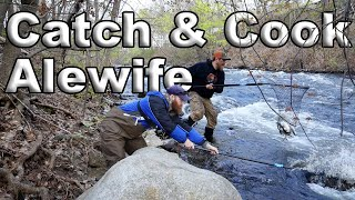 Catch And Cook Alewife Fish, Episode ZERO, State of Maine Wilderness Living Challenge