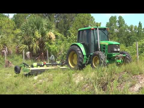 Lehigh Acres Municipal Services Improvement District