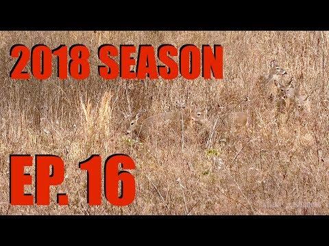 Late Season Mature Doe Hunting with .308 WIN - 2018 Deer Season, Ep. 16