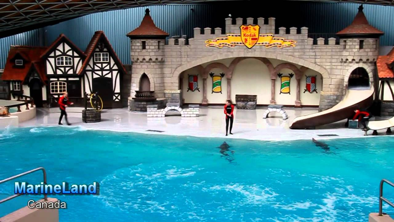 MarineLand, Canada - YouTube