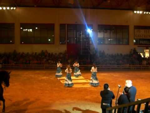 CABALLOS Y MUSICA EN DIRECTO CONCAB09 GRANADA.MOV