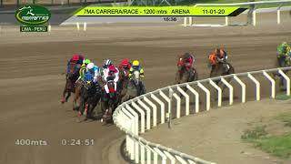Vidéo de la course PMU PREMIO OPEN THOROUGHBRED