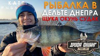 Рыбалка в ДЕЛЬТЕ ДНЕПРА ЩУКА СУДАК ОКУНЬ Тренировка ДРОФА ФИШИНГ день 2