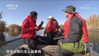 [远方的家]大好河山 探访泰湖湿地| CCTV中文国际