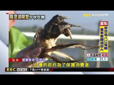 2019.08.27中秋節-大閘蟹報導