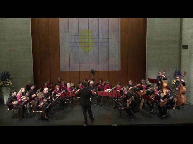 D. Hackner - Danza Cubana - Orchestra Mandolinistica di Lugano - N. Bühler