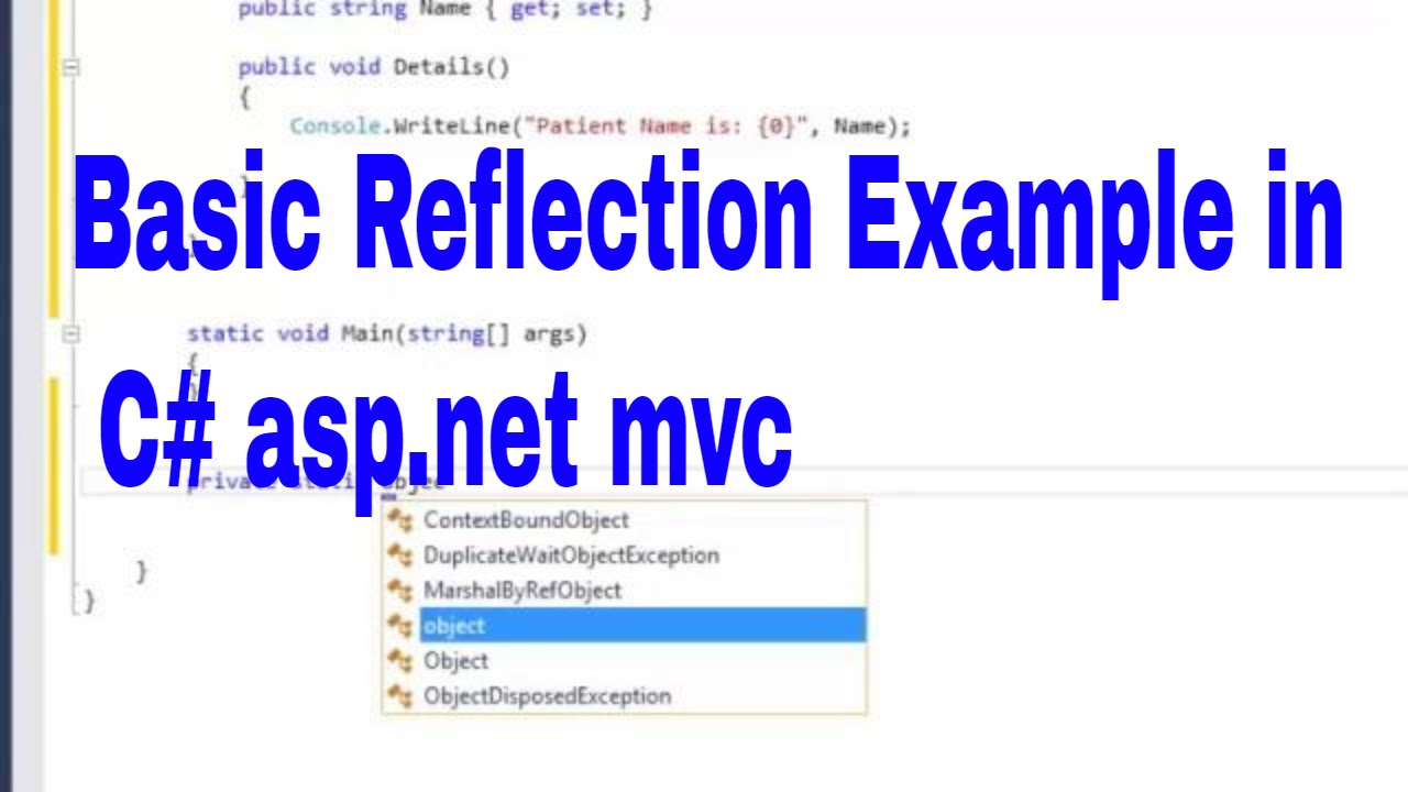 reflection net example