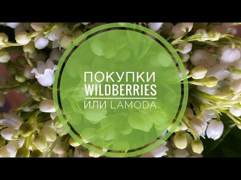 Покупки  🛍 Wildberries  или Lamoda🧐