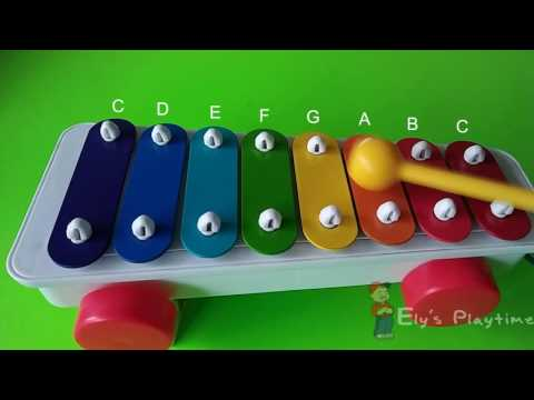 Wheels on the Bus Song -  Fisher Price Xylophone