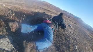 greenland-hunting-aavarneq-2018