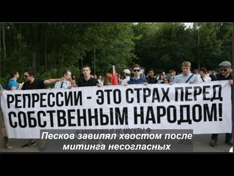 Песков завилял хвостом после митинга несогласных. № 1169