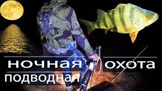 Подводная охота ночью все секреты для новичков
