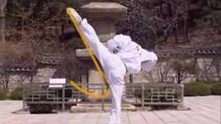 Tae Kwon Do By Well