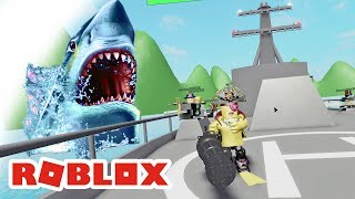 ROBLOX INDONESiA | Sharks are Not EMPOWERED to REPLY This opponent Told 😂
