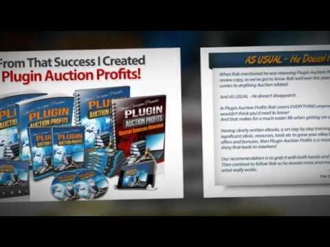 Plugin Auction Profits Review