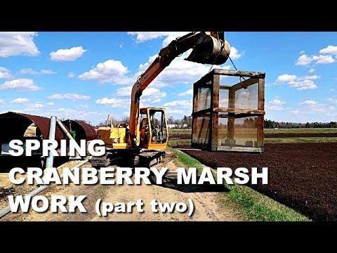 PART 2 Spring Work on the CRANBERRY MARSH {Week in the Life} Farm & Family Life