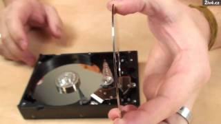 Pitva: pevný disk pod mikroskopem