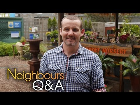 Neighbours Q&A - Ryan Moloney (Toadie Rebecchi) - Part 1