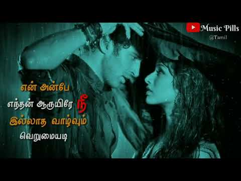 En Anbe Enthan Aaruyire💕💕Aashiqui 2💕💕Tamil WhatsApp status💕💕Music Pills