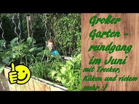 Großer Gartenrundgang Im Juni - Mit Trecker, Küken Und Vielem Mehr 😃