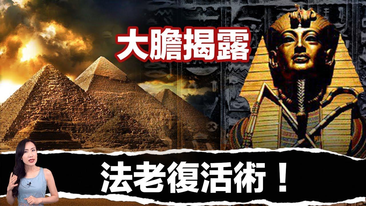 考古界大發現:埃及法老掌握永生之術!| 馬臉姐