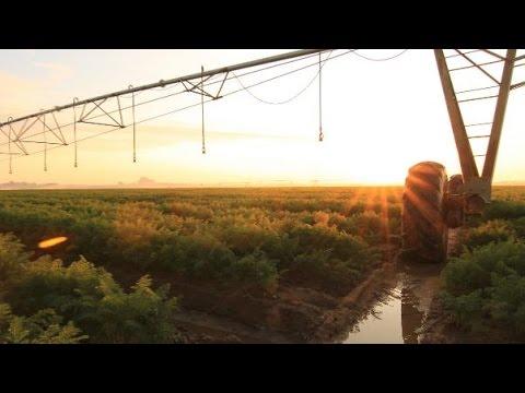Smart Eco-farming
