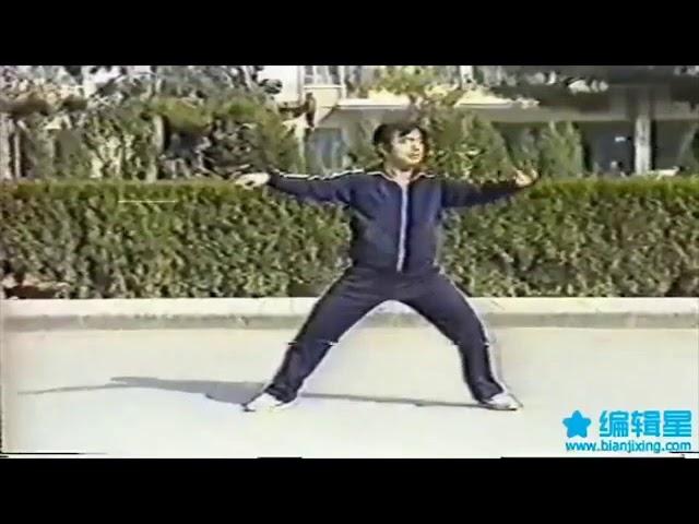 Zhang Jian Jun - Tai Chi style Chen Xinjia Yilu [陈氏太极拳新架 Taijiquan style Chen Xinjia]