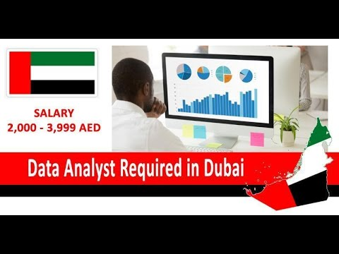 Data Analyst Required in Dubai| How to Apply | Customer Services Jobs in Dubai UAE