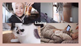 리사로그 | 프리랜서의 주말 보내기(feat 점식쓰, …