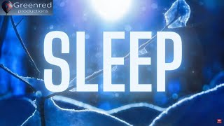 Deep Sleep Music: Binaural Beats Sleeping Music, Lucid Dreaming Music