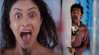 Jr Ntr Latest Funny COmedy Scene | Telugu Comedy scenes | Telugu Videos