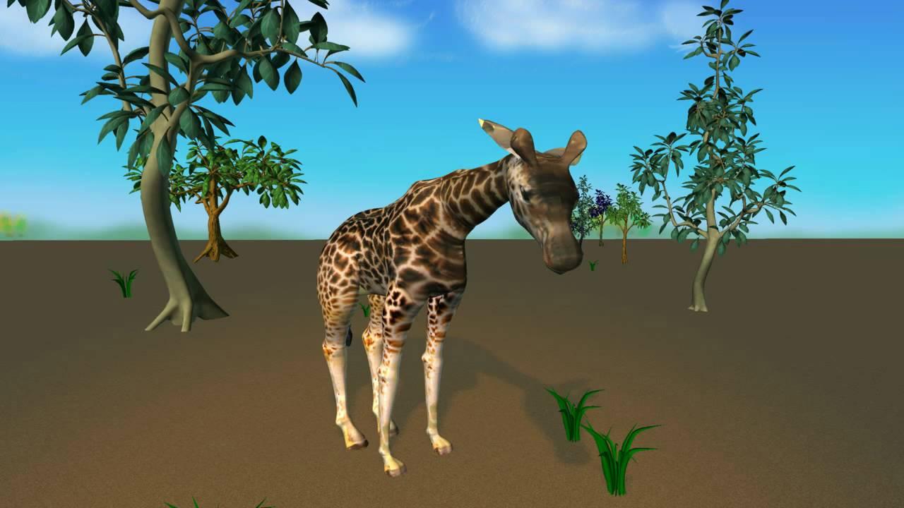 3d giraffe animation youtube