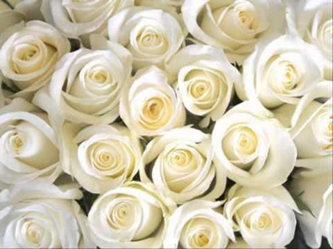 การจัดซุ้มดอกไม้งานแต่ง แบบผมงานแต่งชุดไทย