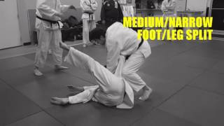 TAI OTOSHI Analysis of Foot/Leg and Hand/Arm Actions