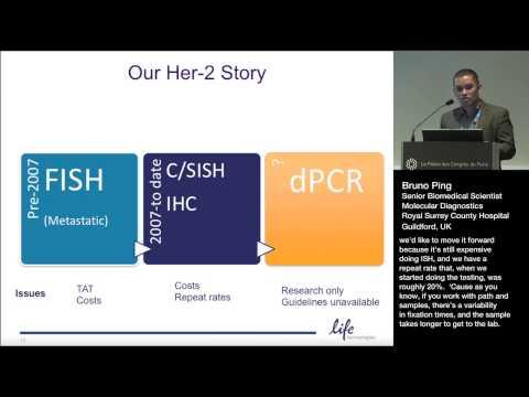 Her-2 Amplification Assessment in Breast Cancer FFPE Samples: QuantStudio 3D Digital PCR vs. ISH