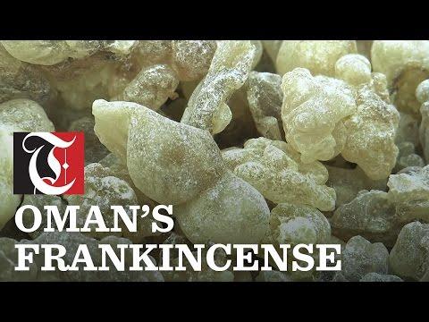 Oman's Frankincense
