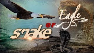 Snake or Eagle ll Best Action Movie Dubbed in English Full Movie Action, Adventure
