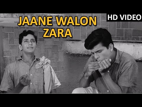 Jaane Walon Zara Full  Song  Dosti Movie Songs 1964  Mohammad Rafi Hit Songs