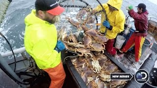 Deadliest Catch: Dungeon Cove Sneak Peek
