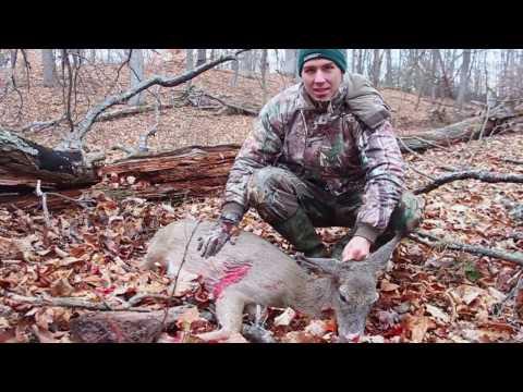 Deer Hunt Backyard Adventure