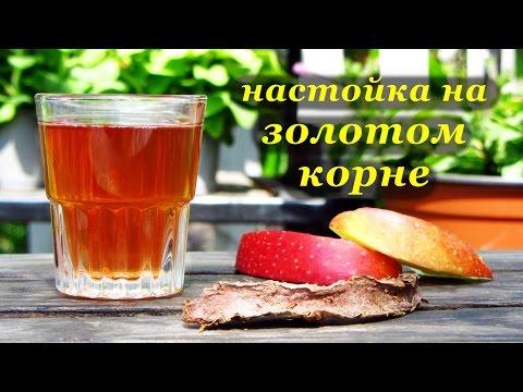 Как настаивать золотой корень на водке рецепт