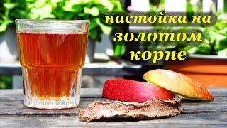 Рецепт настойки на золотом корне (родиола розовая) от Алкофана