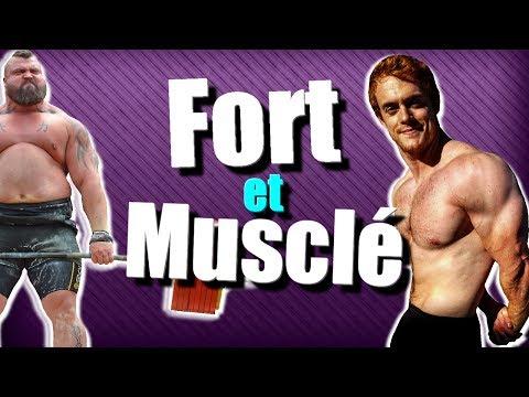 CYCLE DE PROGRESSION : Devenir Fort et Musclé