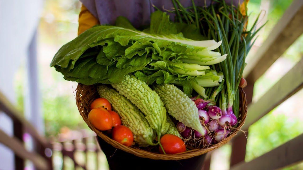 Membuat masakan khas Makassar Paria Kambu dari hasil kebun