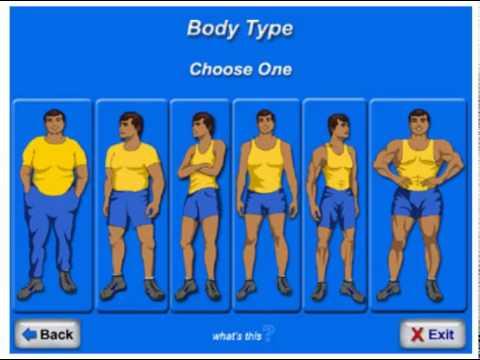 body fat percentage scale
