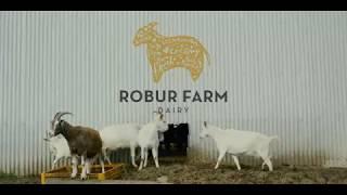 Meet Leon - Robur Farm Dairy's Goat Farm Manager
