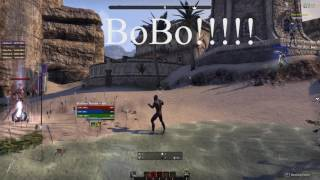 BoBo 41K Bow/Bow nightblade build for ESO
