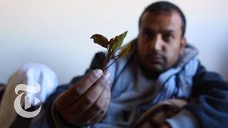 Inside a Yemeni Khat Session [BONUS SCENE]   Times Dispatched    مشهد إضافي: في جلسة قات يمني